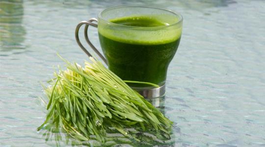 Trail: barley grass juice |  u-Trail
